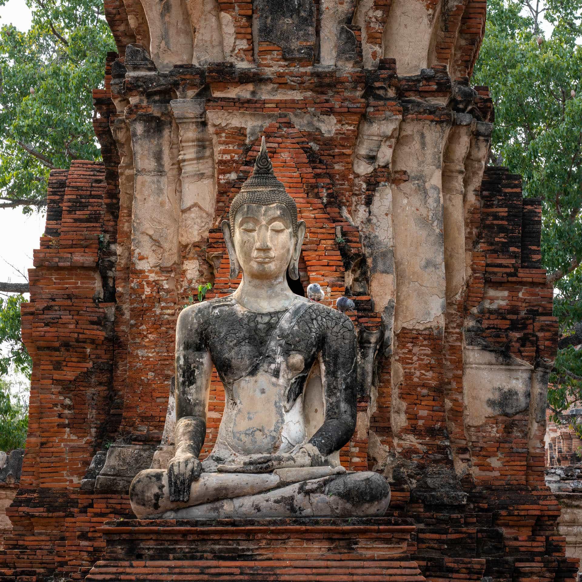 Buddha statue in Ayutthaya | f/8 1/125sec ISO-500 105mm