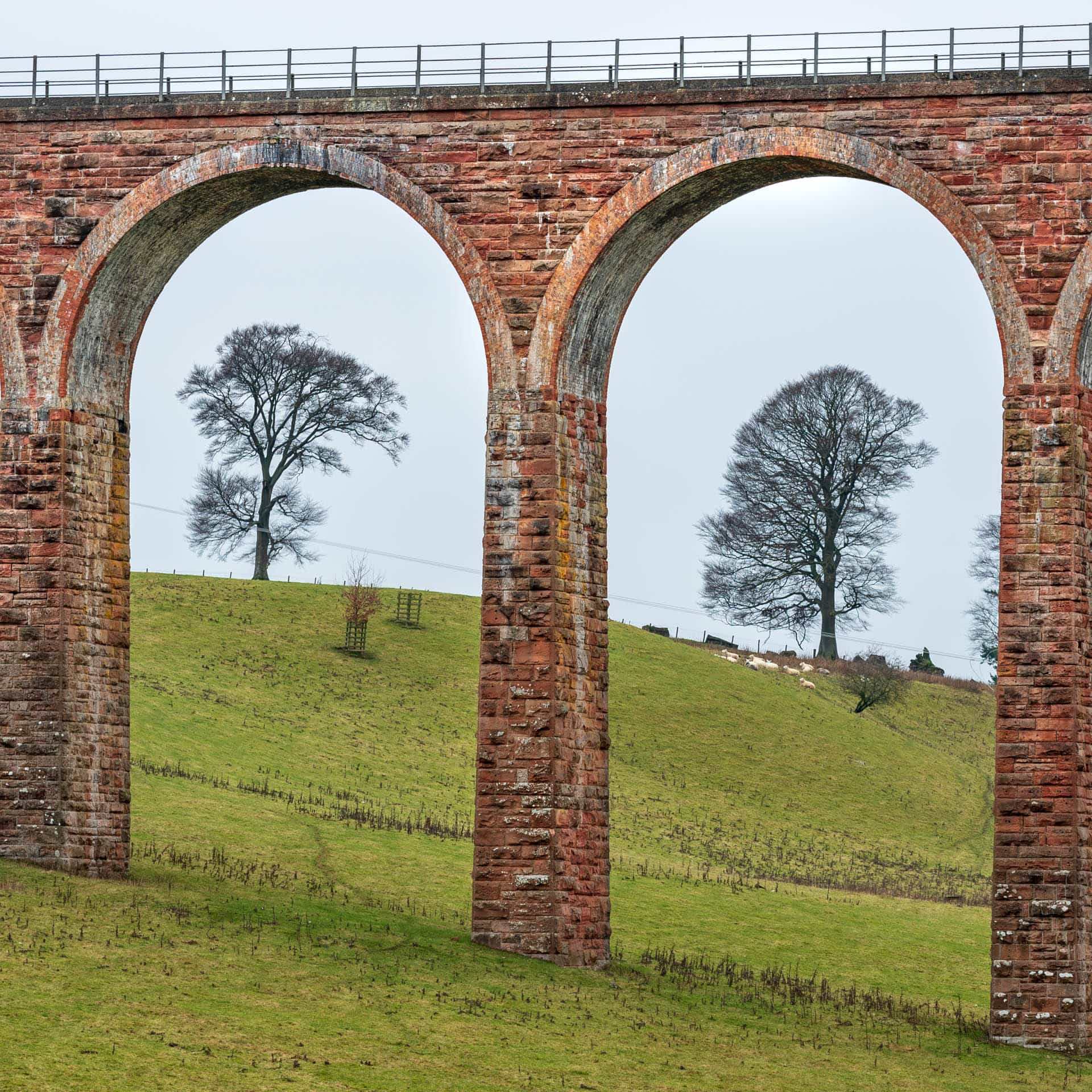 Leaderfoot Viaduct arches | f/8 1/25sec ISO-100 85mm