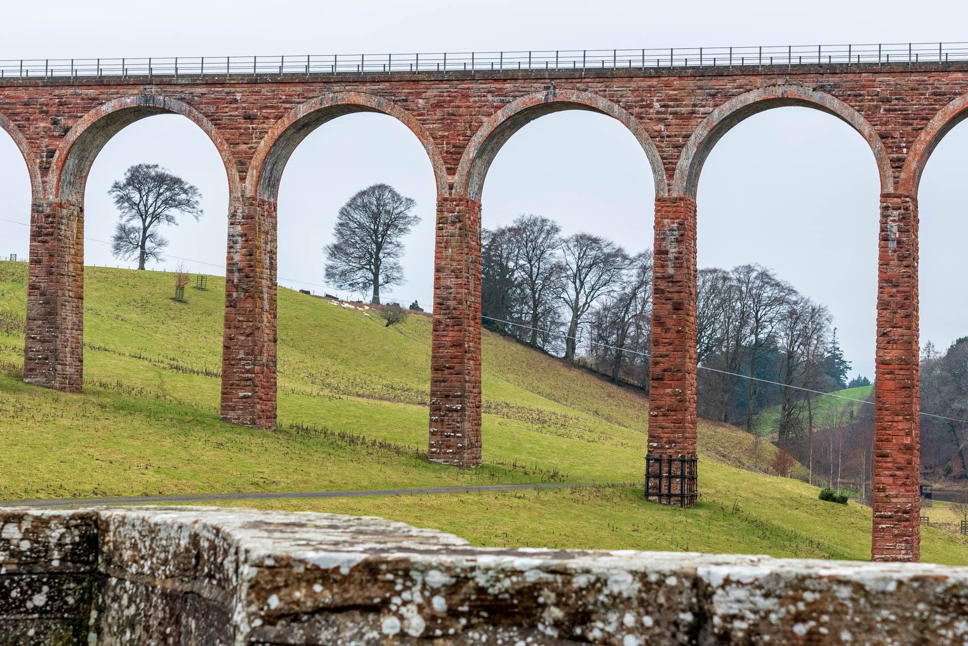Leaderfoot Viaduct arhes and tress | f/8 1/25sec ISO-100 54mm