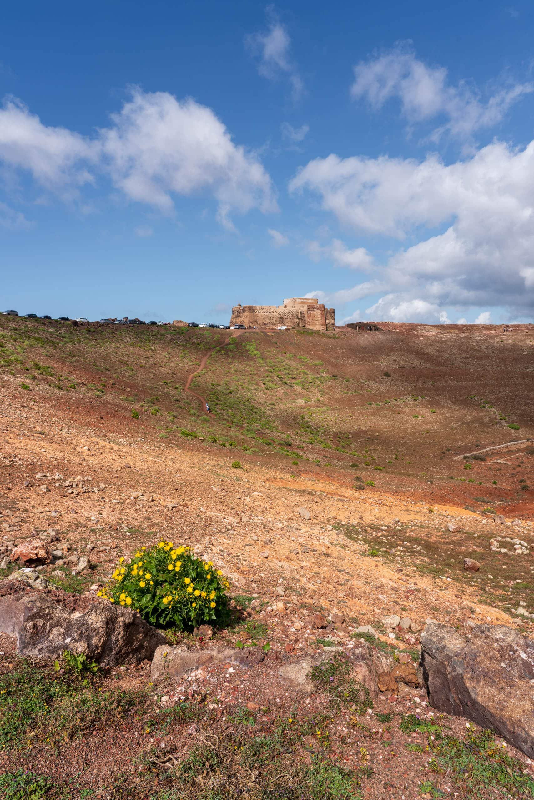 Castillo de Santa Barbara view no2 | f/13 1/160sec ISO-100 24mm  | ILCE-7RM3 | 2019-01-27 13:15:15