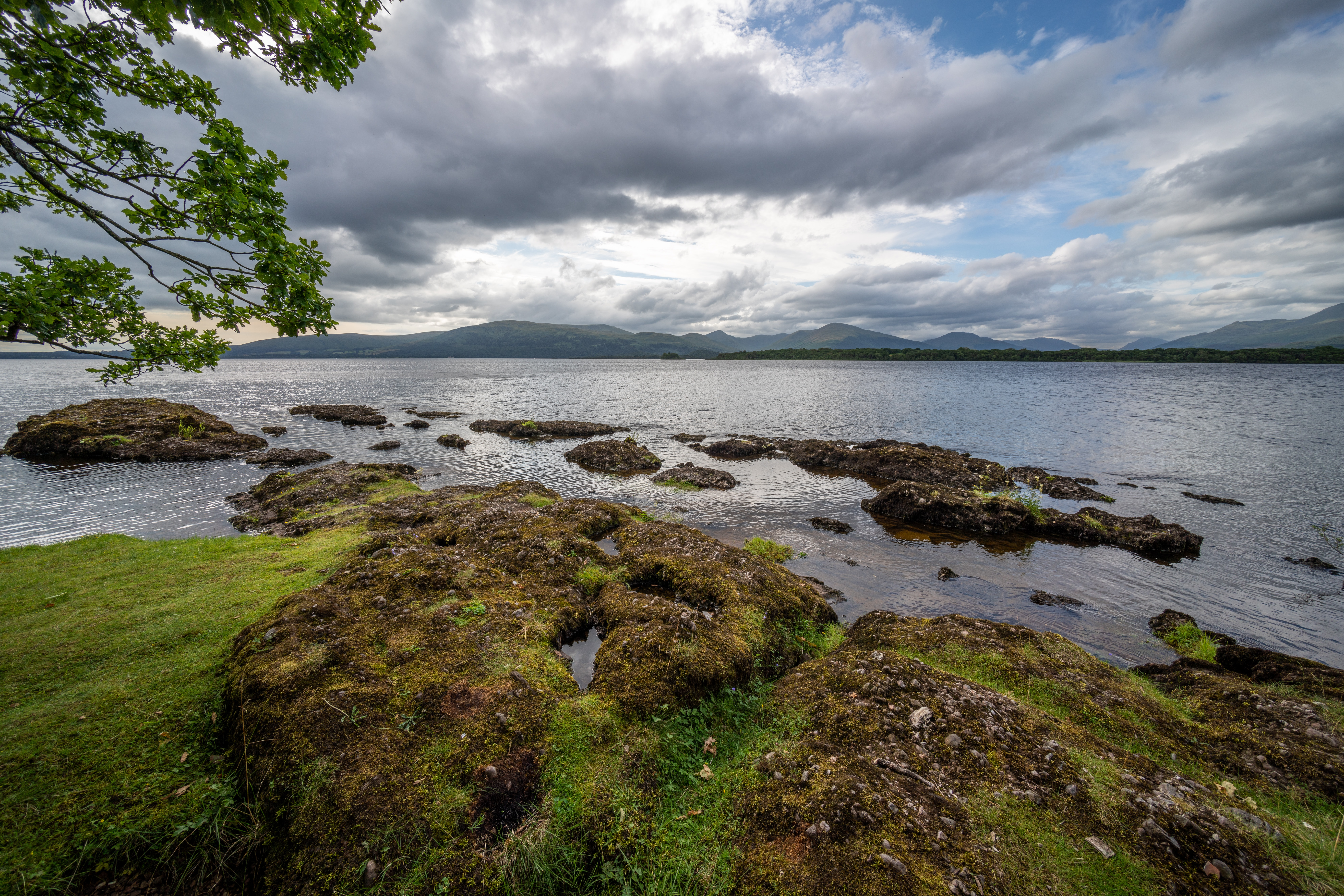 Inchcailloch #1